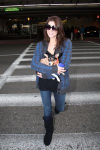 Ashley Greene photo with her cute puppy as she was arriving at LAX in Los Angeles on December 28th 2009 1