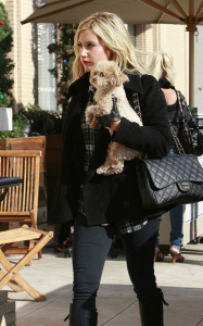 Ashley Tisdale picture while shopping at Juicy Couture and Louis Vuitton on December 10th 2009 around Beverly Hills 5