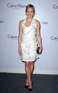 Abbie Cornish attends the Calvin Klein Collection during the 1st Annual Celebration For LA Arts Monthly and Art Los Angeles Contemporary on January 28th 2010 in California 1