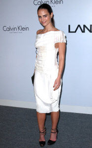 Jordana Brewster at the Calvin Klein Collection during the 1st Annual Celebration For LA Arts Monthly and Art Los Angeles Contemporary on January 28th 2010 in California 2