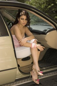 Haifa Wehbe desktop Wallpaper inside the car wearing white shorts and a pink top 4