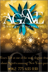 agave new year party 2013