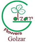 golzar flowers logo