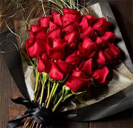 toffaha red roses flowers photo