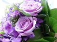 flowers in amman icon