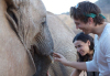 Ashton Kutcher and Demi Moore picture during their visit to Africa on September 28th 2009 1