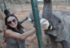 Demi Moore picture during her visit to Africa with her husband on September 28th 2009 3