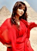 Asala Nasri new photo shoots for her campaign in a red elegant dress 5