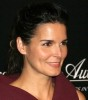 Angie Harmon attends the 2009 Rodeo Drive Walk Of Style Award Ceremony Honoring Princess Grace Kelly Of Monaco in Beverly Hills on October 23rd 2009 5