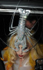 Lady GaGa spotted wearing a silver lobster hat while arriving at Mr Chow restaurant on February 27th 2010 in London England 3