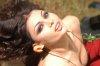 Haifa Wehbe desktop Wallpaper wearing a red dress at a garden like scene 5